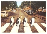 Karel Kopic: Abbey Road - ze série penguins didn´t misa out